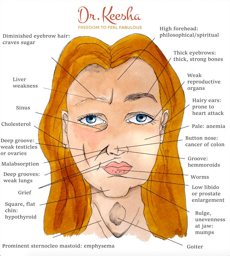 Ayurvedic-face-mapping-dr-keesha