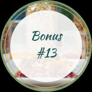 Bonus 13