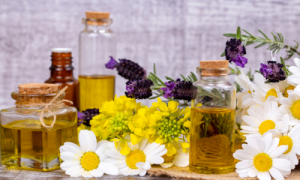 herbs and flowers with carrier oils
